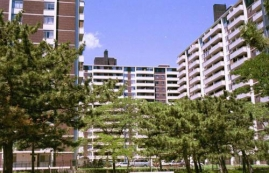 Studio / Bachelor Apartments for rent in Toronto at Rose Park - Photo 01 - RentersPages – L225028