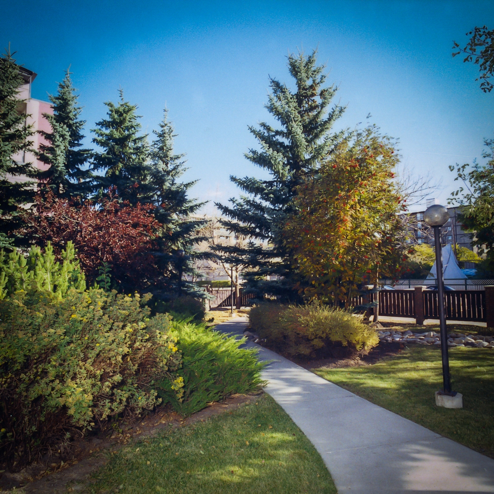 2 bedroom Apartments for rent in Calgary at Chelsea Estates - Photo 02 - RentersPages – L157309