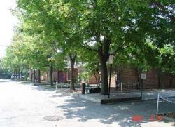 4 bedroom Townhouses for rent in Burlington at Kings Village - Photo 01 - RentersPages – L3832