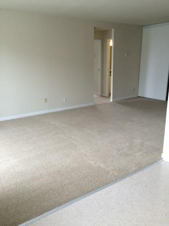 Studio / Bachelor Apartments for rent in Gatineau-Hull at Habitat du Lac Leamy - Photo 04 - RentersPages – L9125