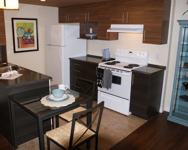 luxurious Studio / Bachelor Assisted living retirement homes for rent in Hampstead at Vista - Photo 04 - RentersPages – L19545
