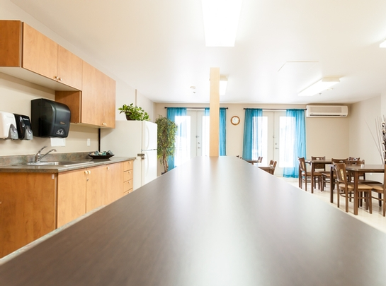 1 bedroom Assisted living retirement homes for rent in Longueuil at Habitats Lafayette - Photo 11 - RentersPages – L19483