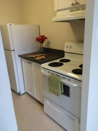 1 bedroom Apartments for rent in Gatineau-Hull at Habitat du Lac Leamy - Photo 02 - RentersPages – L9126