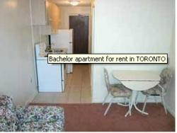 furnished Studio / Bachelor Apartments for rent in Toronto at 2 Laxton Avenue - Photo 01 - RentersPages – L3010