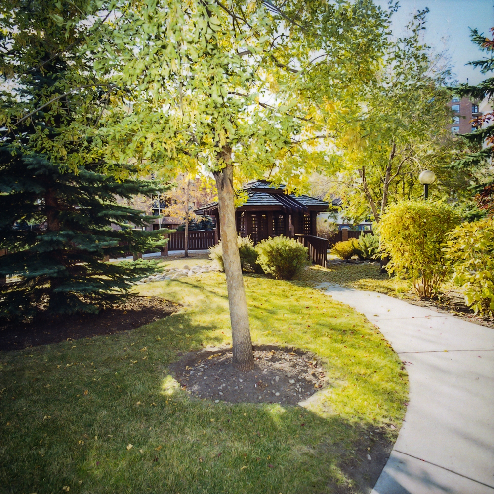 1 bedroom Apartments for rent in Calgary at Chelsea Estates - Photo 02 - RentersPages – L157308