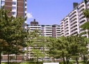 Junior 1 bedroom Apartments for rent in Toronto at Rose Park - Photo 01 - RentersPages – L225029