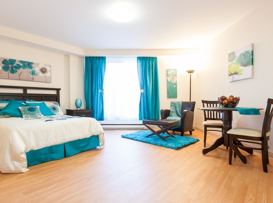 1 bedroom Independent living retirement homes for rent in Quebec City at Le St-Patrick - Photo 07 - RentersPages – L19576