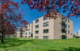 1 bedroom Apartments for rent in North-York at Faywood - Vinci Community - Photo 01 - RentersPages – L401232