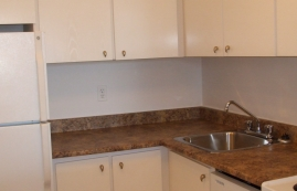 1 bedroom Apartments for rent in Plateau Mont-Royal at Tour Lafontaine - Photo 01 - RentersPages – L23191