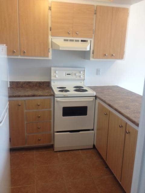 Studio / Bachelor Apartments for rent in Ville St-Laurent - Bois-Franc at 2775 Modugno - Photo 04 - RentersPages – L138864
